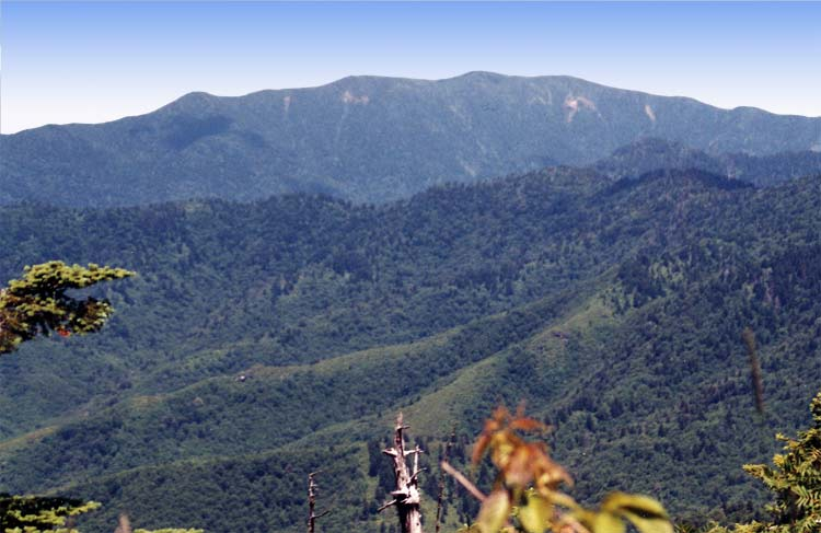 Mt. LeConte in the Smokies